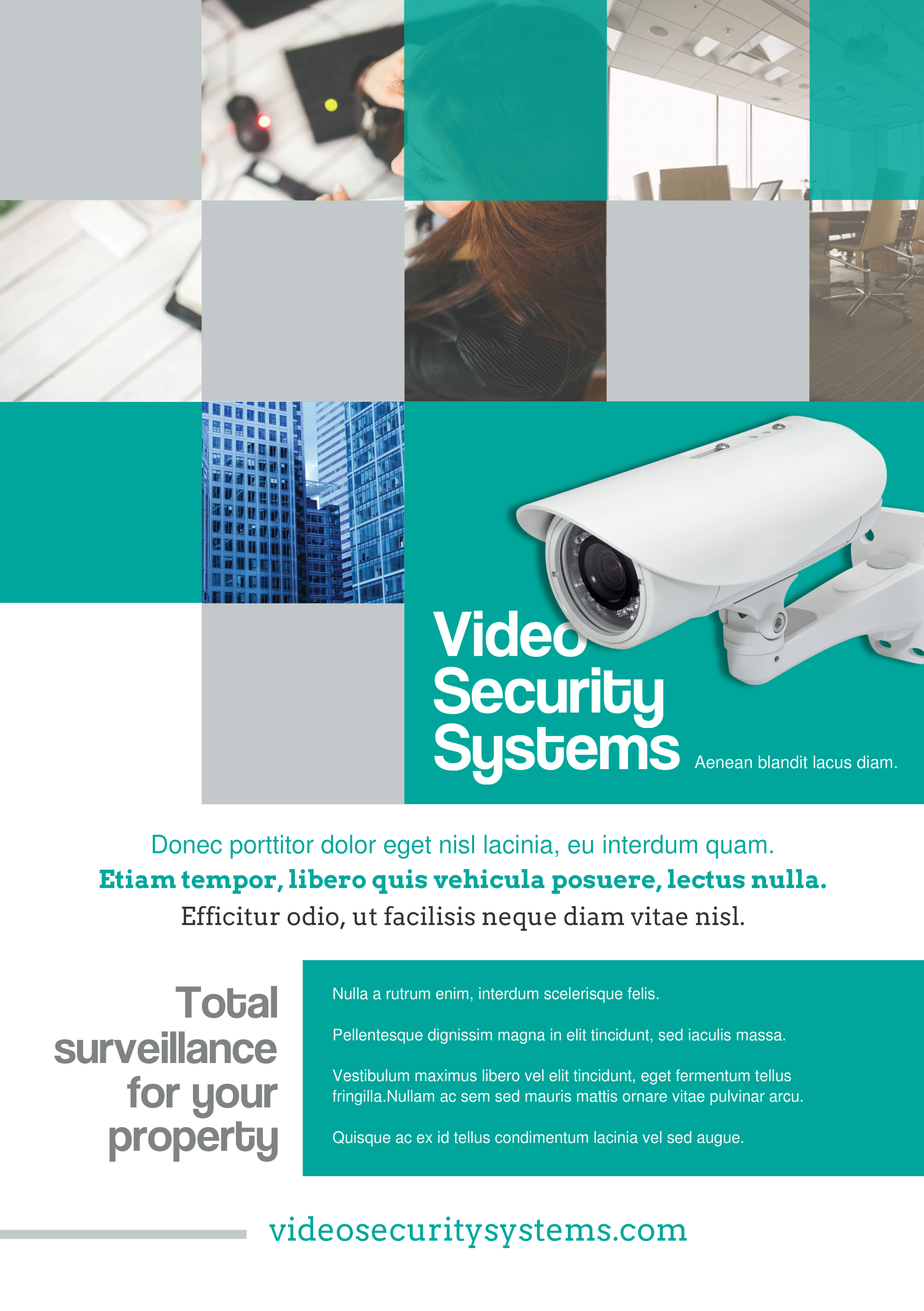 Security Systems A Promotional Flyer Httppremadevideoscoma - Promotional brochure template