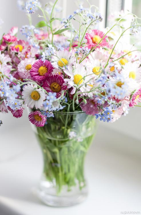 Mazzo Di Fiori Estivi.Sweet Home Blumen Fiori Primaverili Fiori Estivi E Fiori