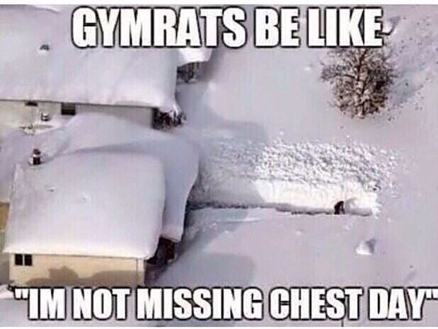 #backtotheGymHumor  #chest  #Day  #fitness  #fridayGymHumor  #girlGymHumor  #GymHumorbeastmode  #Gym...