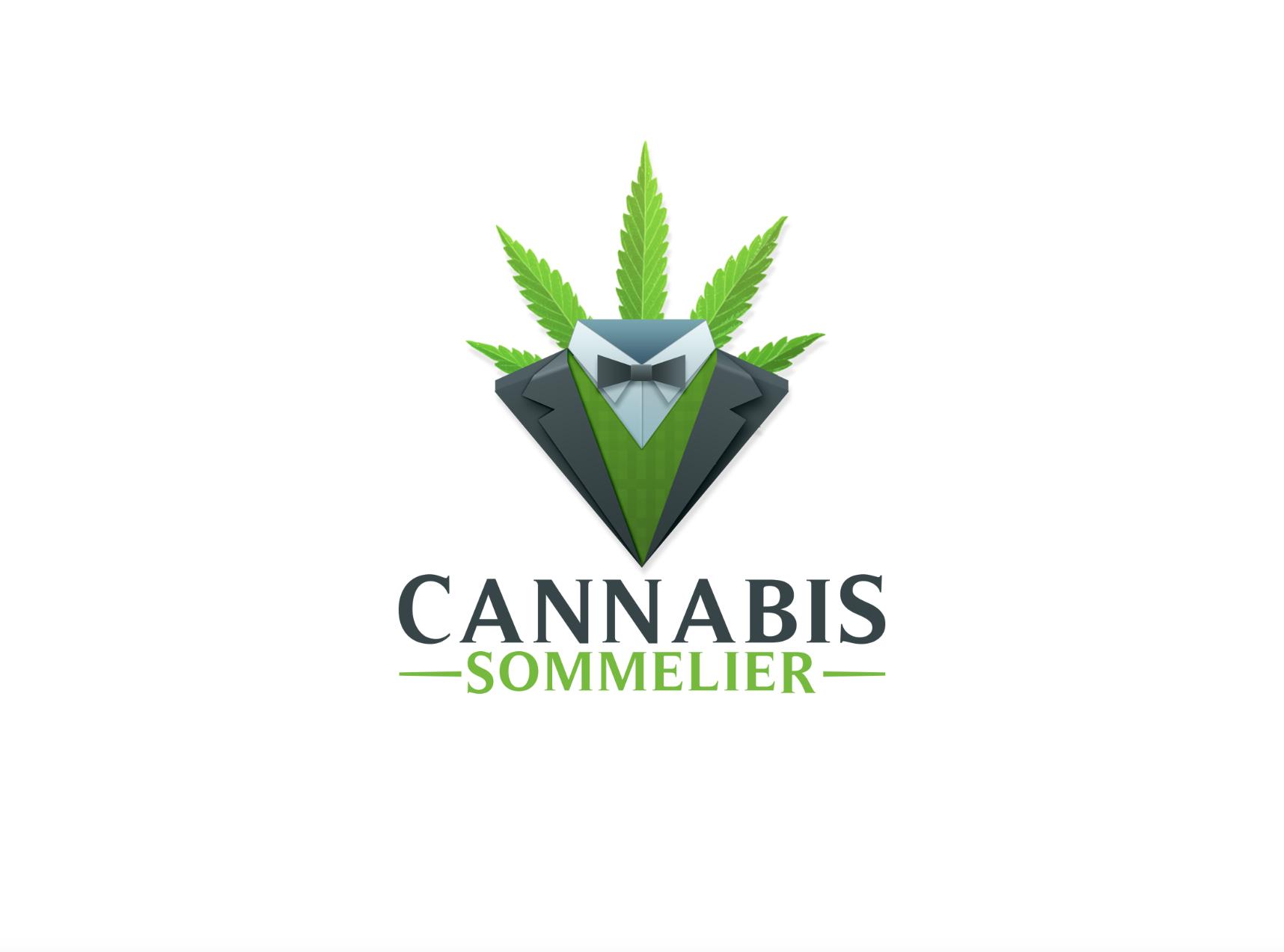 fun logo design for a medical dispensary consulting
