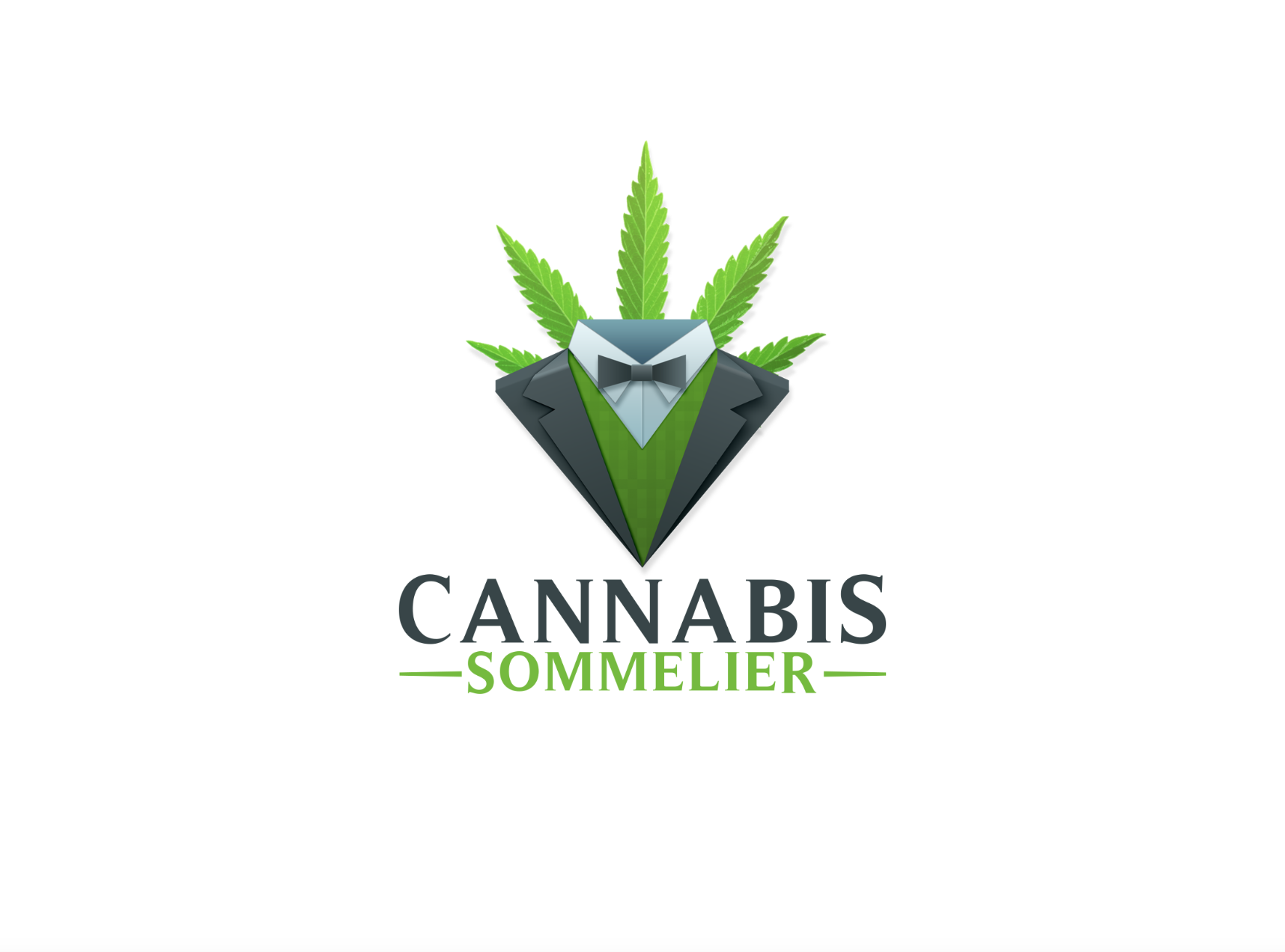 Fun #logo #design for a medical #marijuana dispensary consulting ...