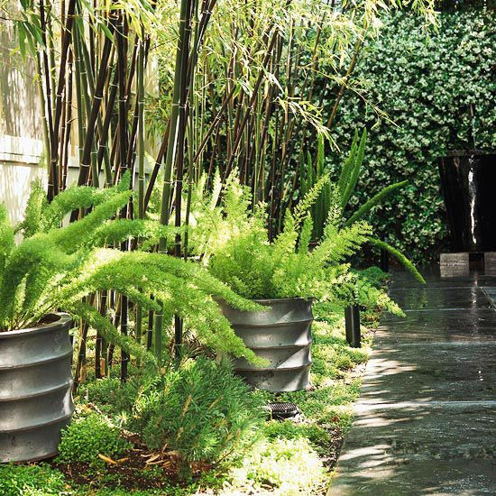 Smart Side Yard Solutions For Your Landscape Side Yard Outdoor Gardens Beautiful Gardens