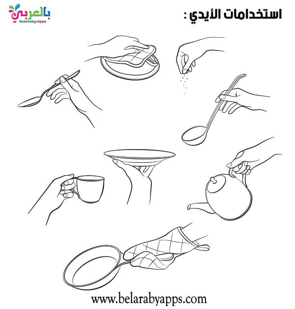 صور ورسومات تلوين وحدة الأيدي اوراق عمل وحدة الايدي للتلوين بالعربي نتعلم In 2021 Okay Gesture