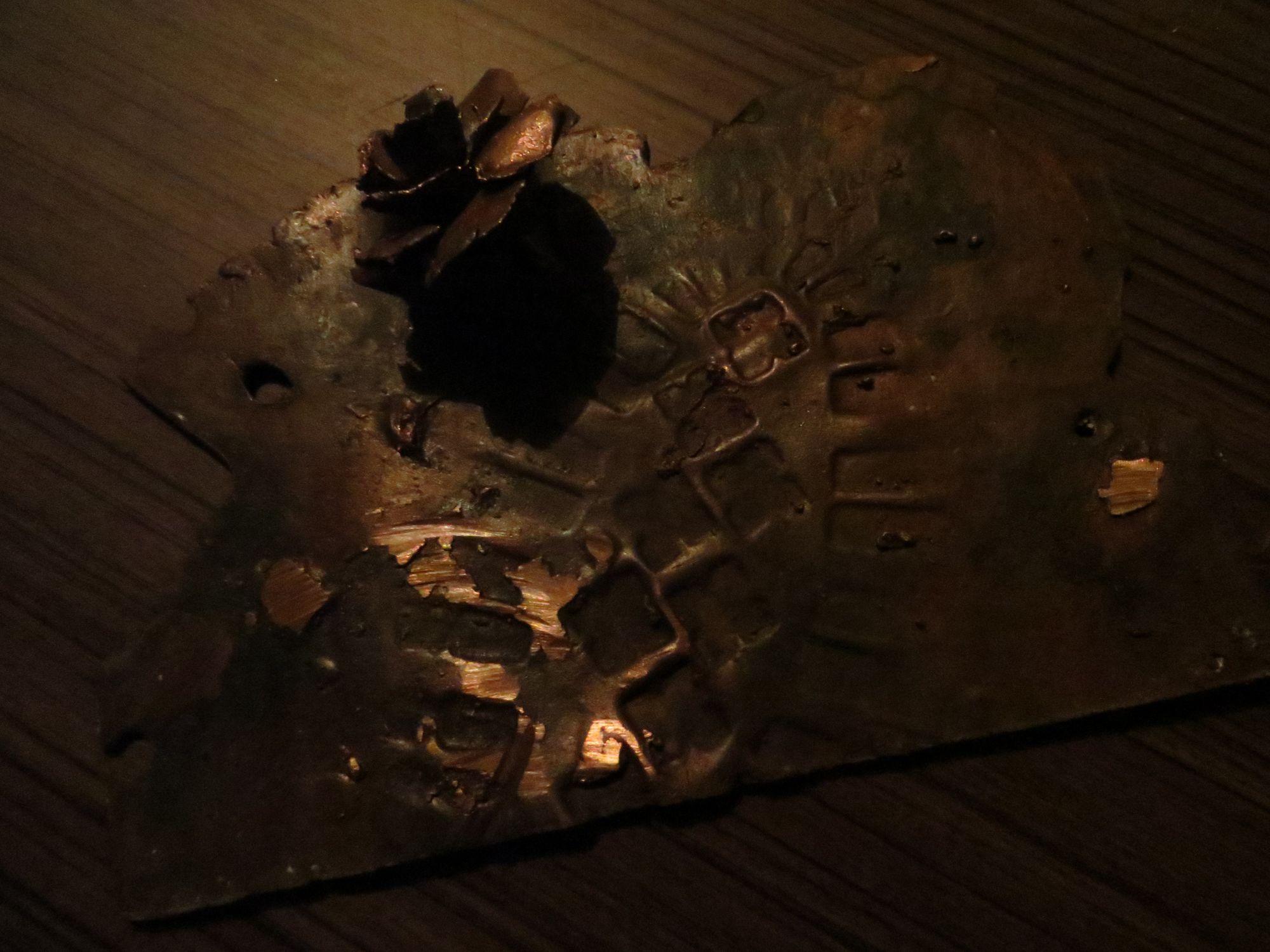 -Evanescence- bronze