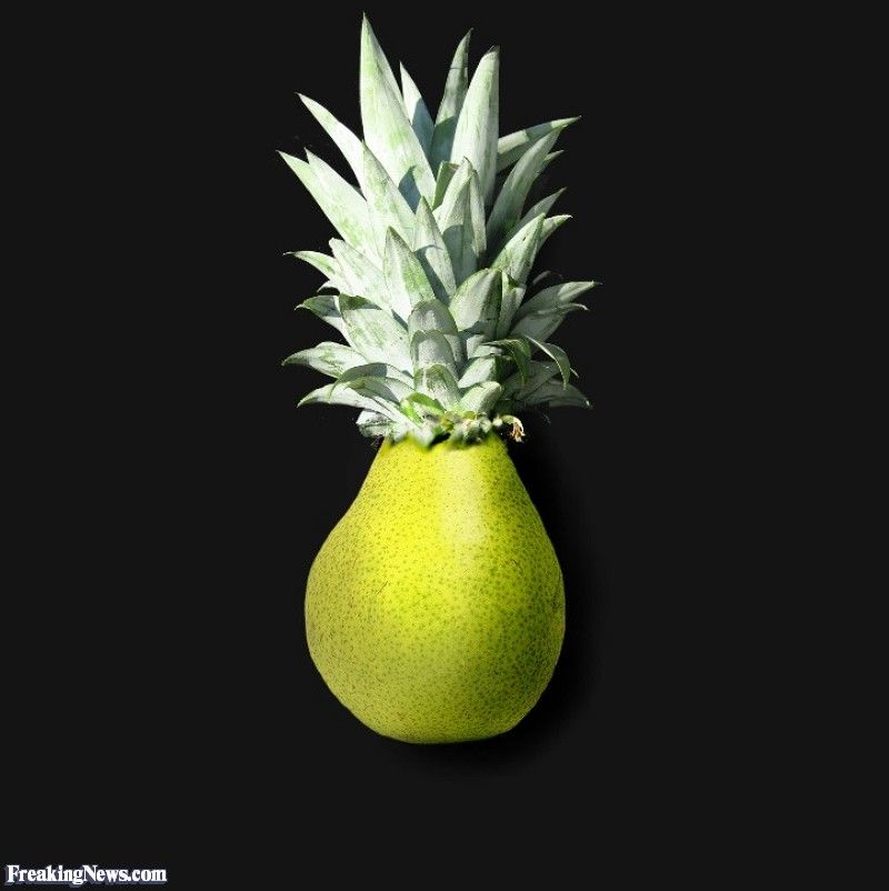 Pear And Pineapple Hybrid Fruits And Vegetables Pictures