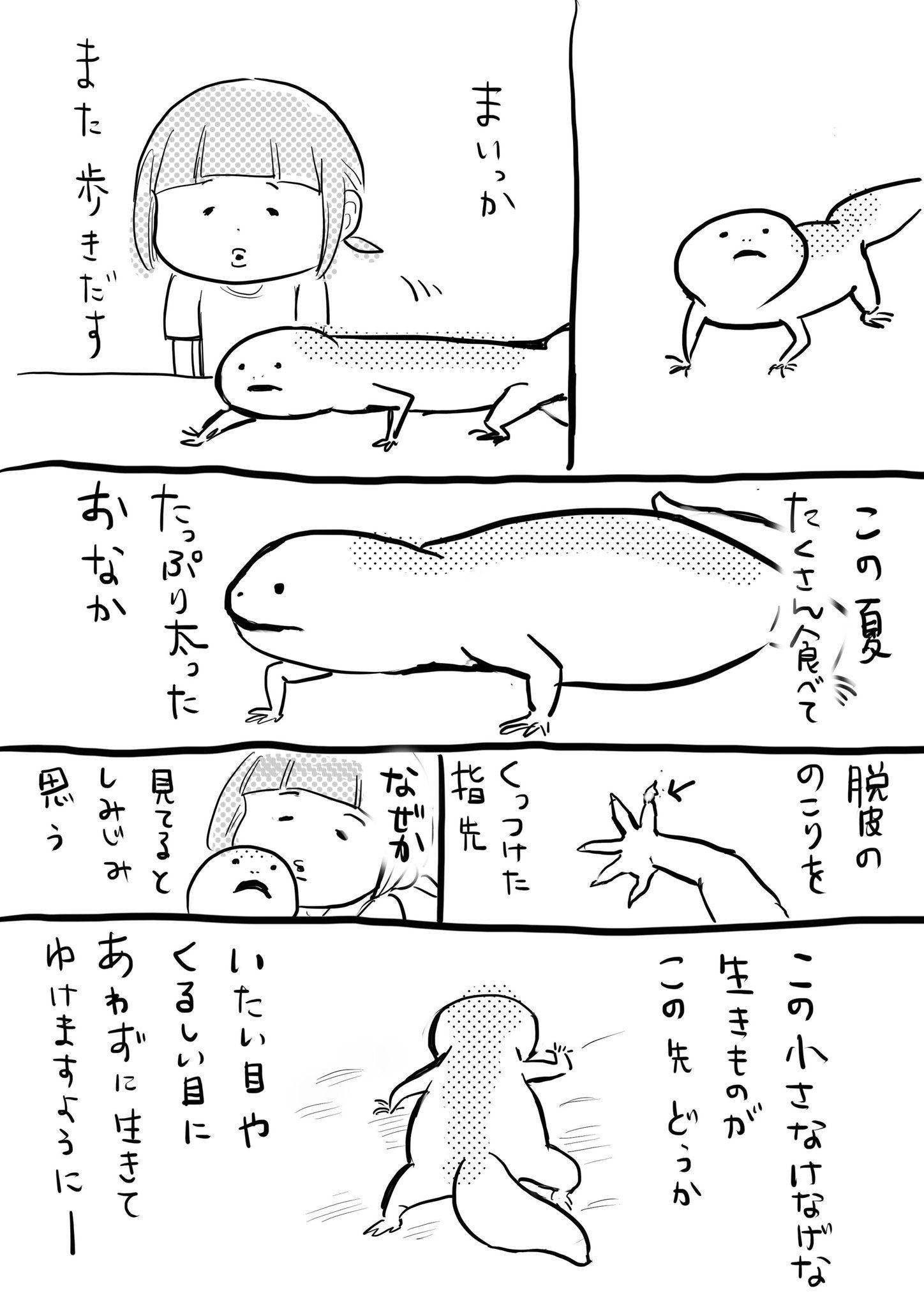 犬と猫 おしゃれまとめの人気アイデア pinterest 充 片桐 松本ひで吉 漫画 ひで