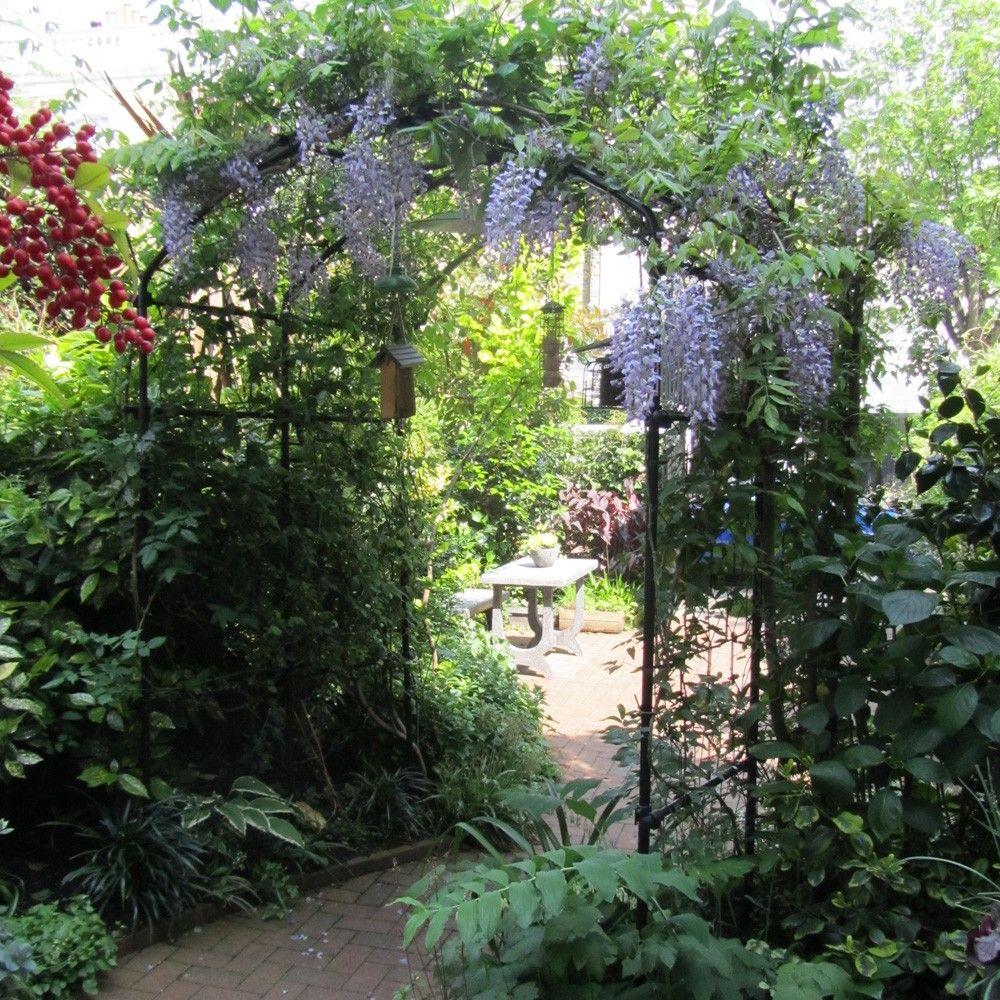Exceptional Vine Arch   Garden Arches   Garden Structures #gardening #garden  #gardenstructures