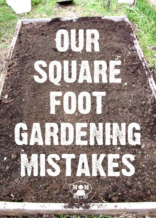 Square Foot Gardening Mistakes – Learn from Ours First! | Square ...