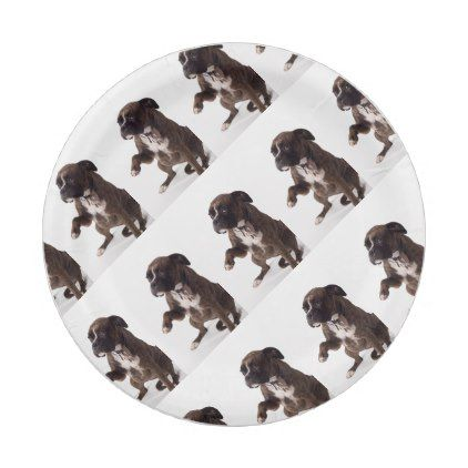 Boxer dog paper plate  sc 1 st  Pinterest & Boxer dog paper plate | Dogs Boxer dogs and Puppys