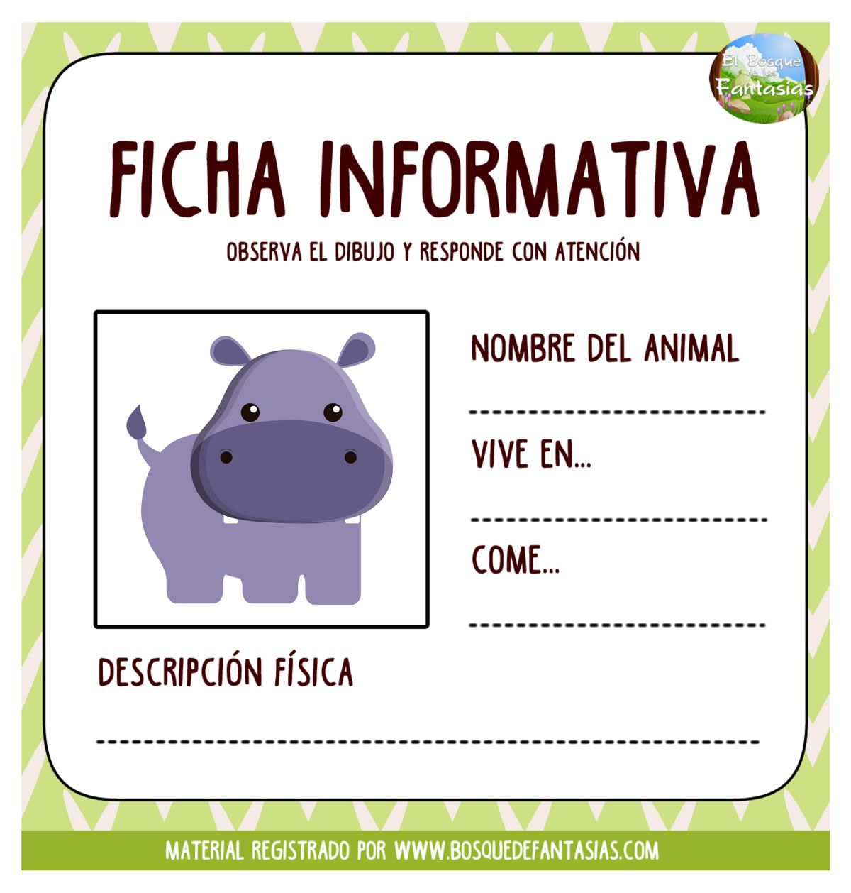 Fichas Informativas Hoja 15
