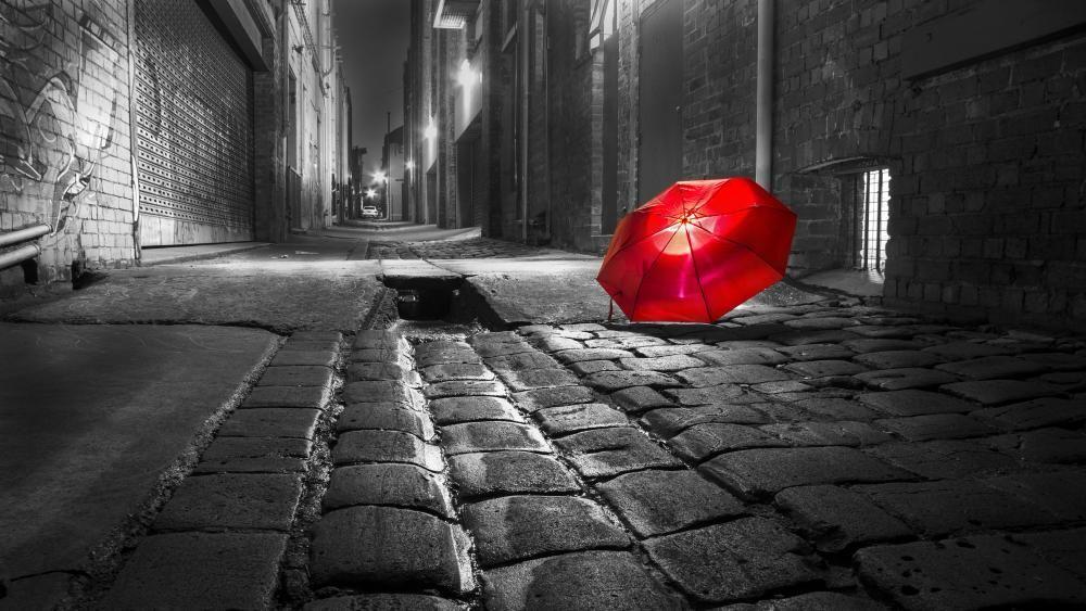 Red Umbrella 4k Ultrahd Wallpaper Wallpaper Studio 10 Tens Of Thousands Hd And Ultrahd Wa Monochrome Photography Umbrella Photography Photography Wallpaper