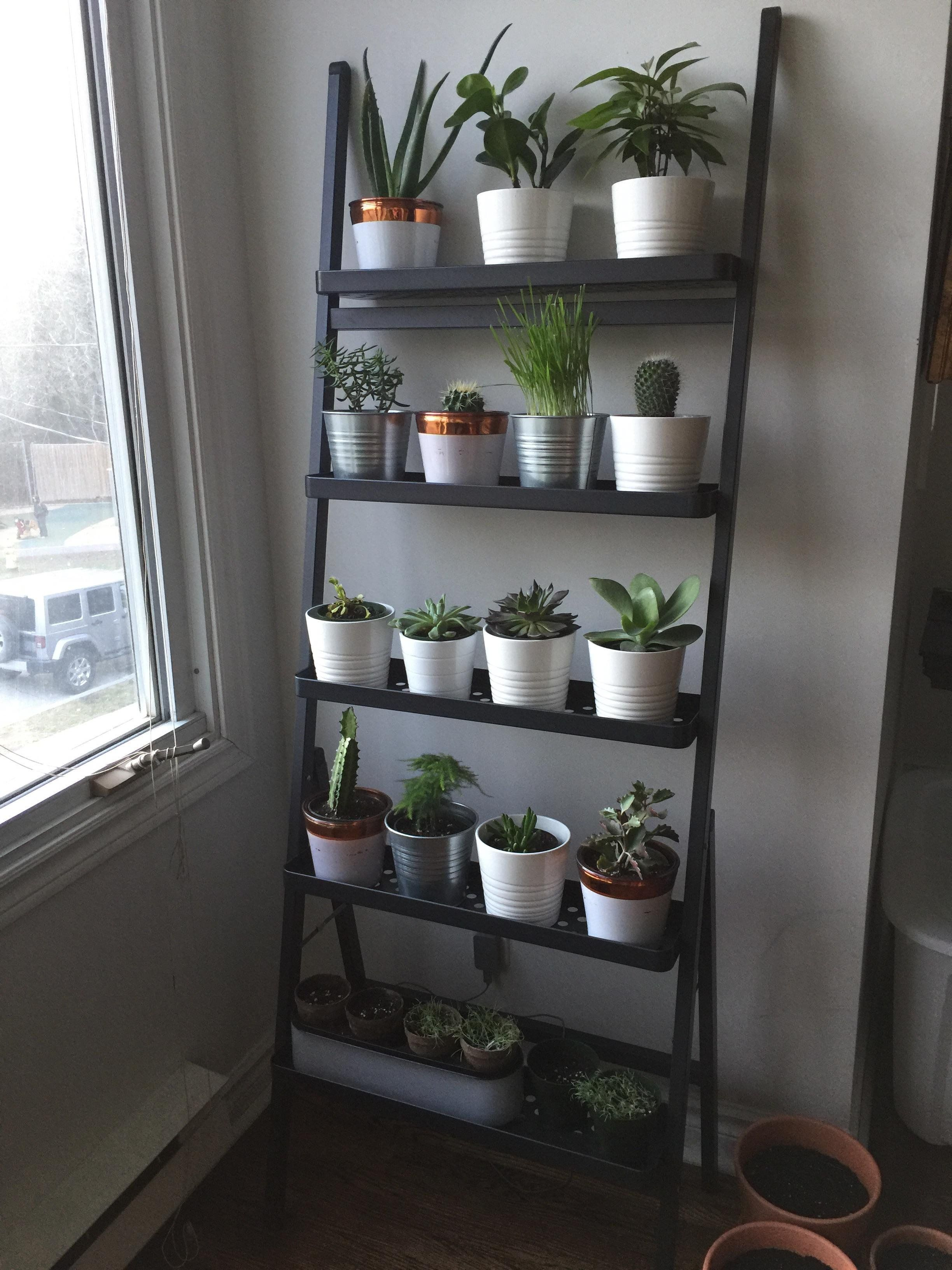 For organizing and herb garden in the kitchen 9QR