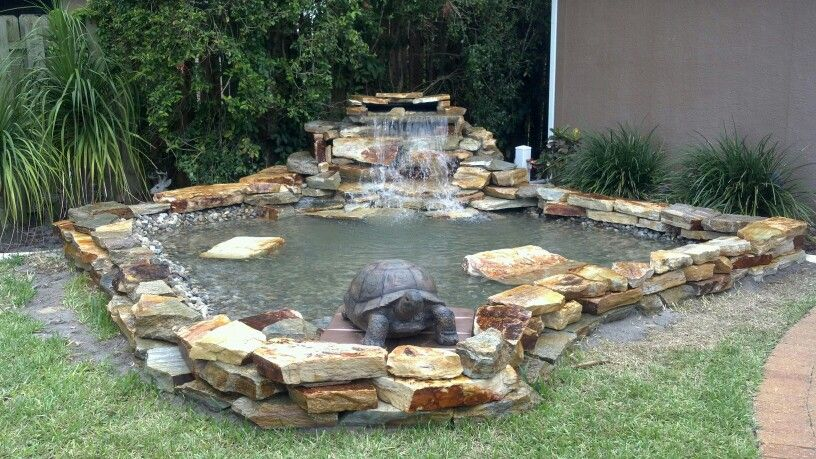 Koi and turtle pond | Turtle pond, Ponds backyard, Backyard