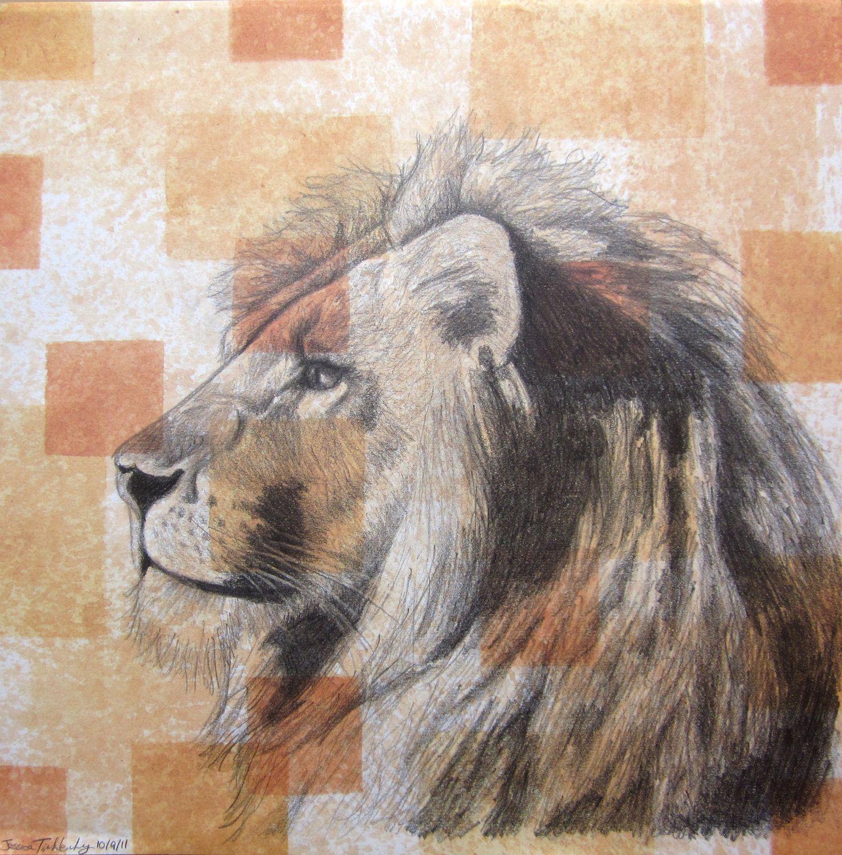 Lion art panthera leo in pencil original pencil by laurelmae art