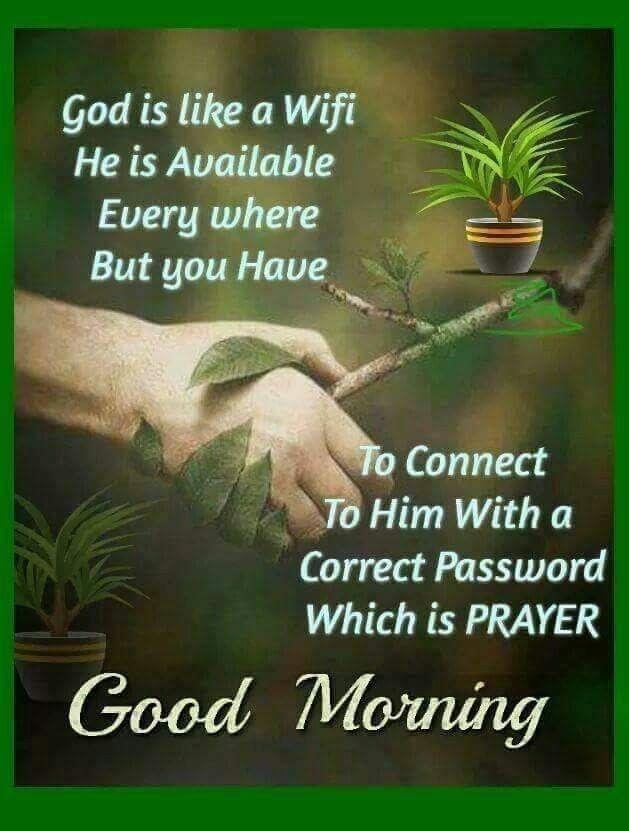 Good Morning Spiritual Quotes Unique Pinvictoria Cardenas On Genius Ideass Wooohooo Pinterest