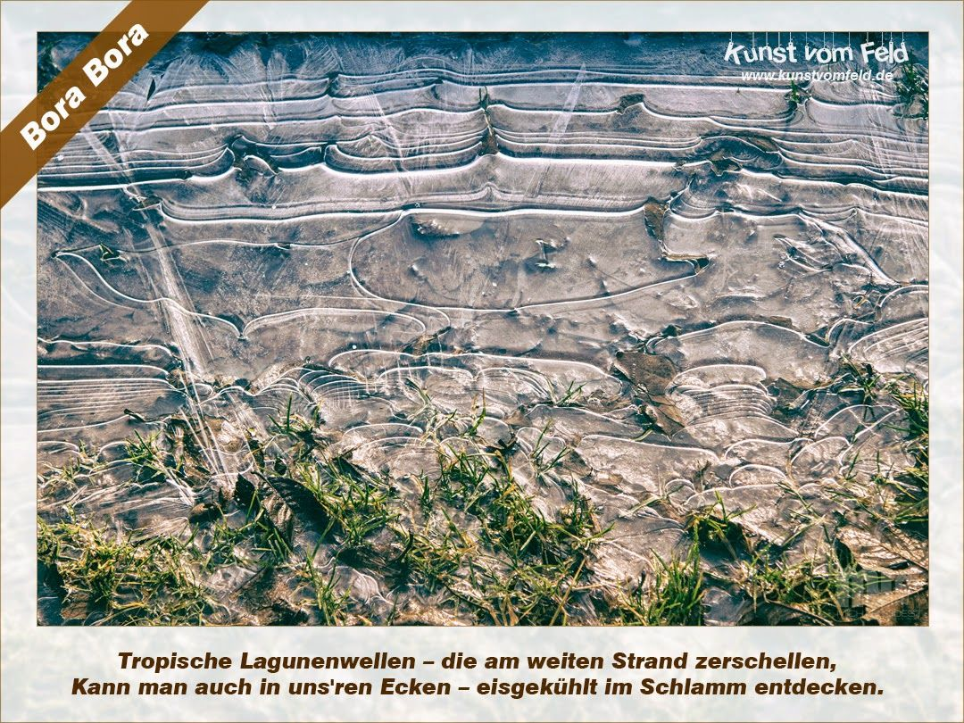 Kunst vom Feld: Bora Bora – www.kunstvomfeld.de