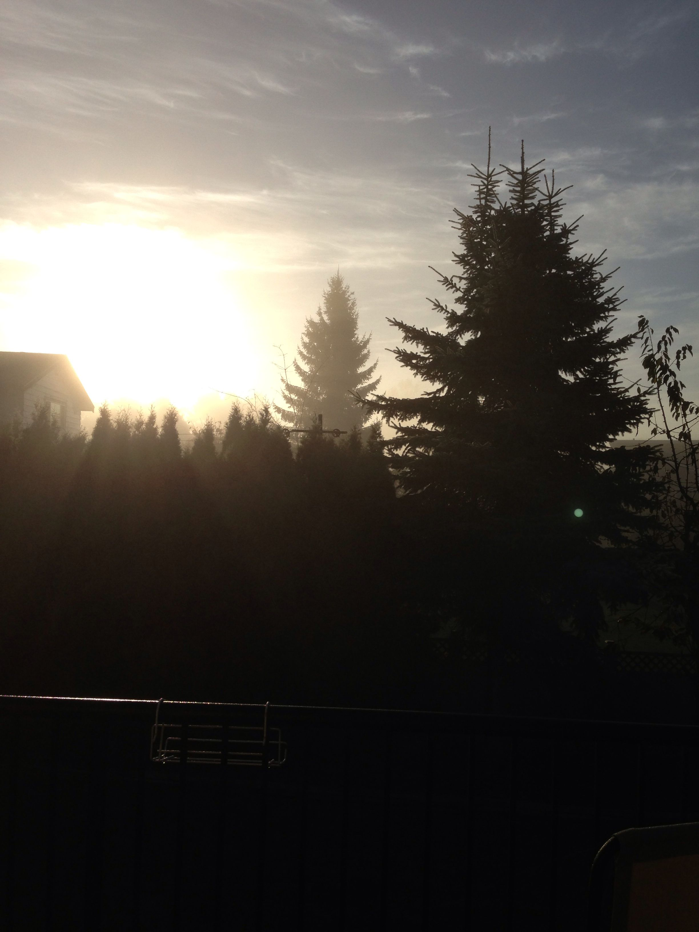 sunrise out my back deck #burnaby