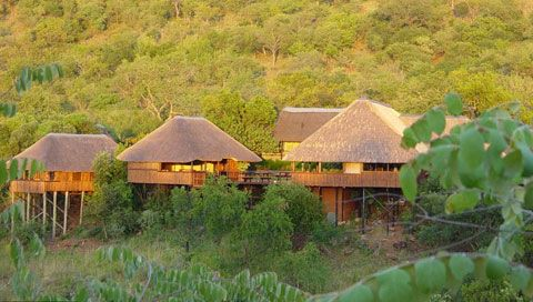 Pongola game reserve accommodation. | Game reserve, South africa ...
