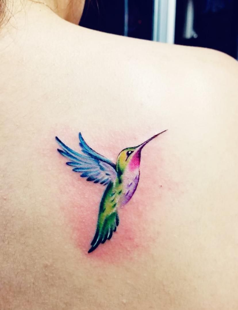 Hummingbird Tattoo Hummingbird Tattoo Black Small Hummingbird Tattoo Hummingbird Tattoo