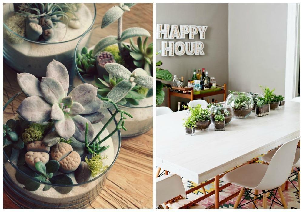 Decorar con cactus, perfectos en todas las estancias | Decorar tu casa es facilisimo.com