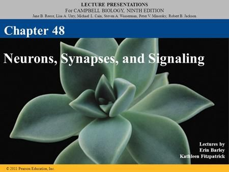 Lecture presentations for campbell biology ninth edition jane b snail fandeluxe Images