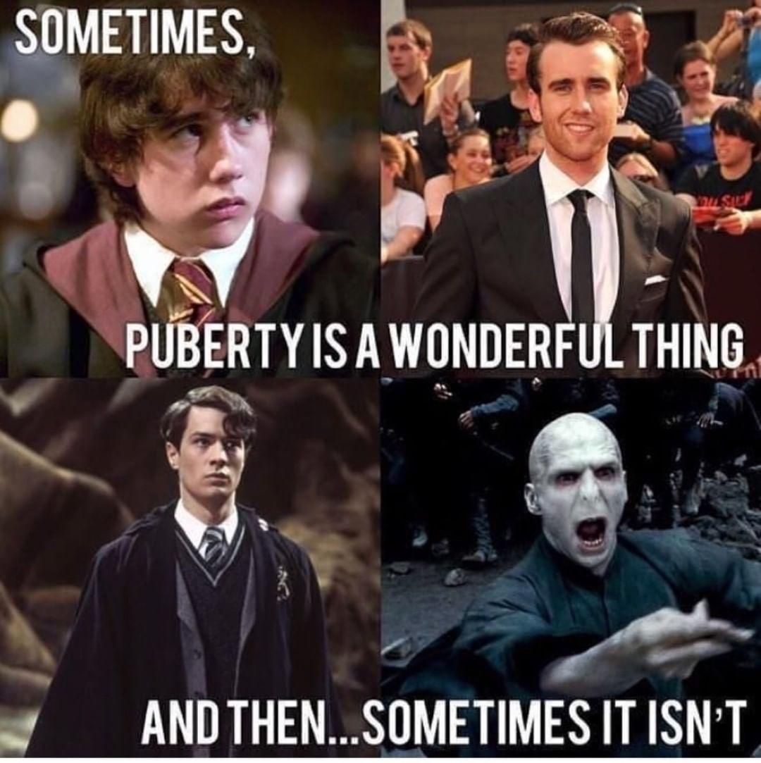 22 Harry Potter Memes Emma Watson Harry Potter Voldemort Harry Potter Memes Hilarious Harry Potter Puns