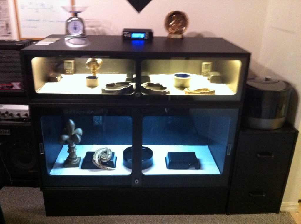 Thinking about getting a snake? Get them a PVC enclosure