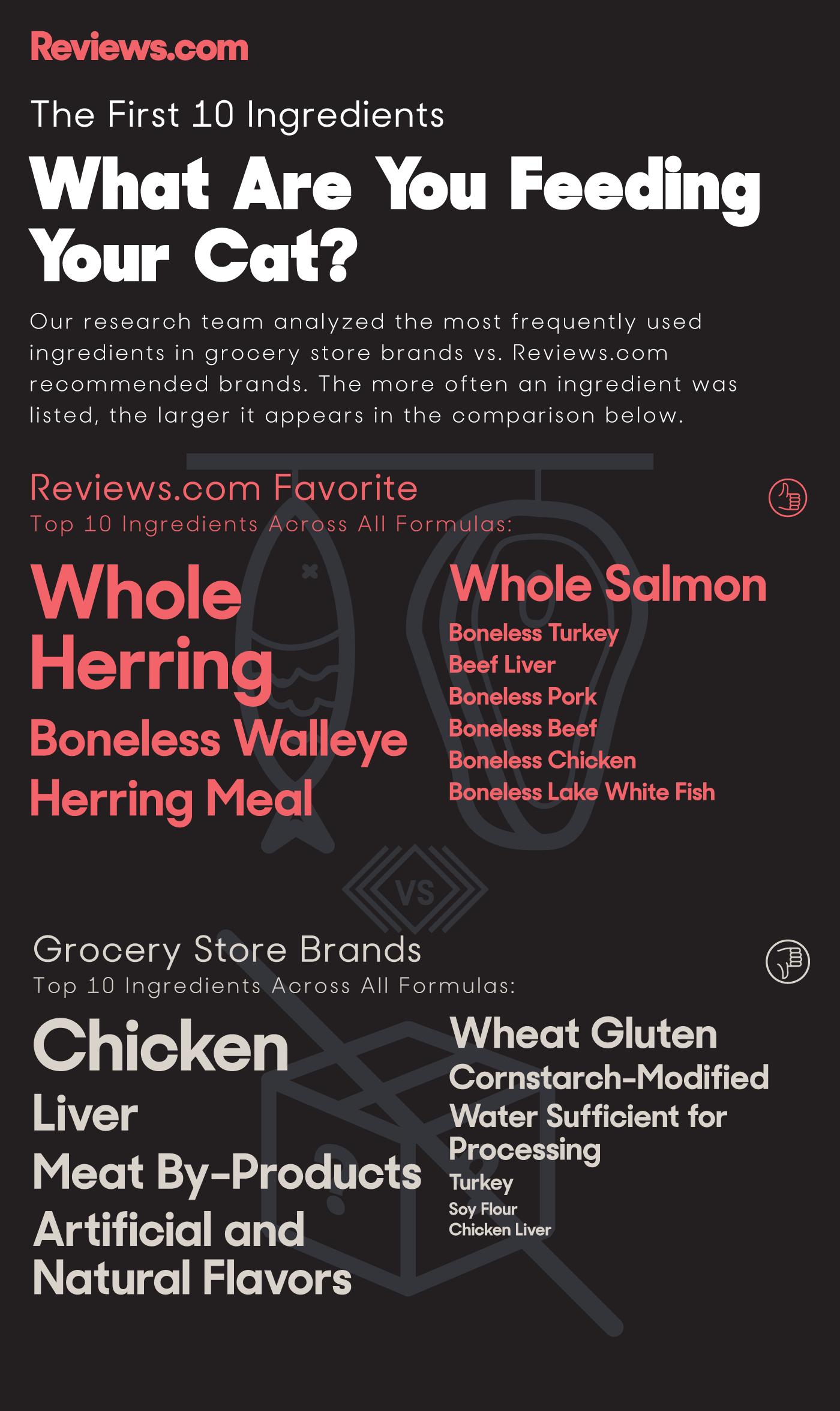 The Best Cat Food Best cat food, Cat food reviews, Cat food