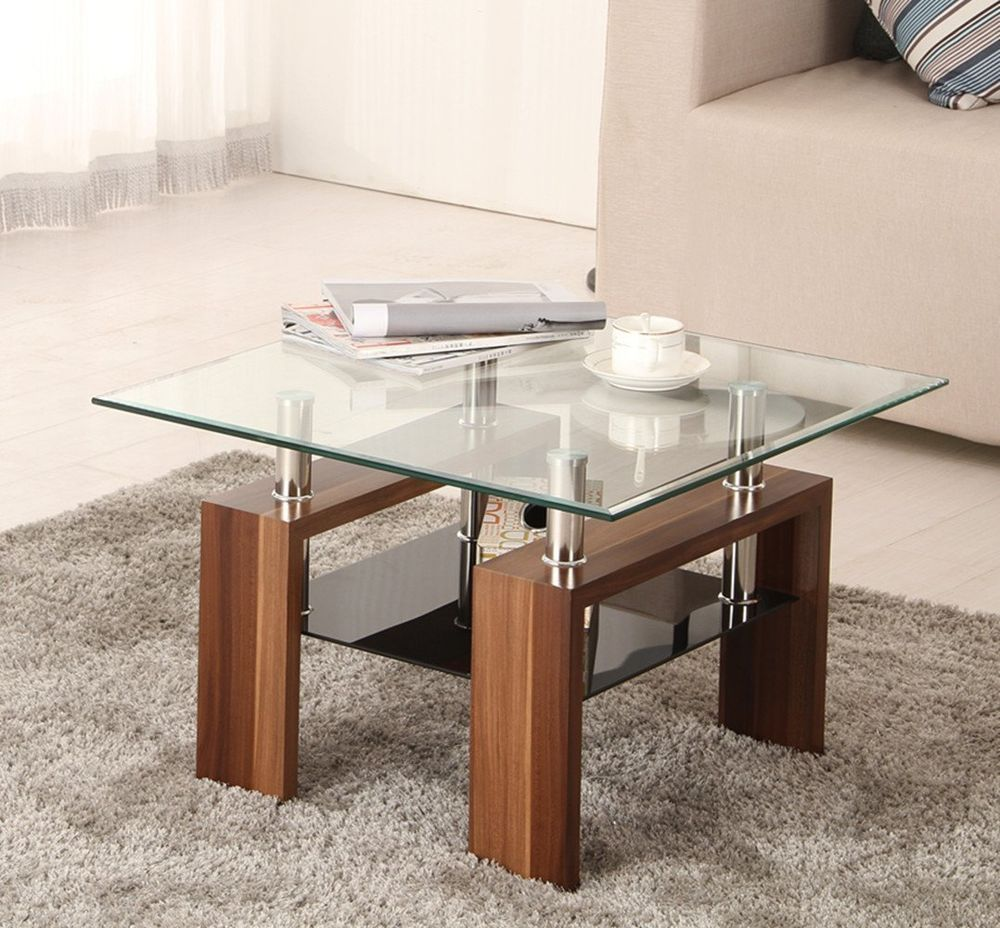 Square Coffee Table With Storage Designer Contemporary Small