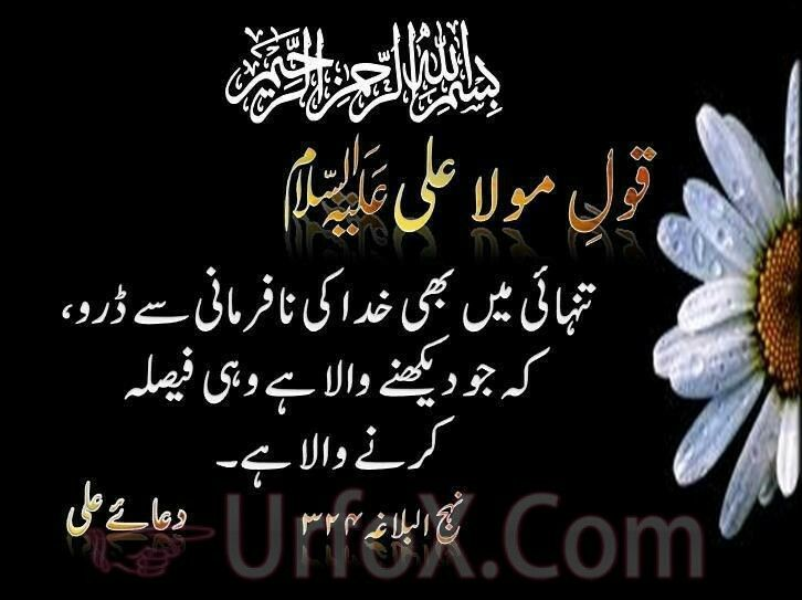 Pin By 7 Sky Llc On Pictures Urdu Quotes Islamic Quotes Quotes