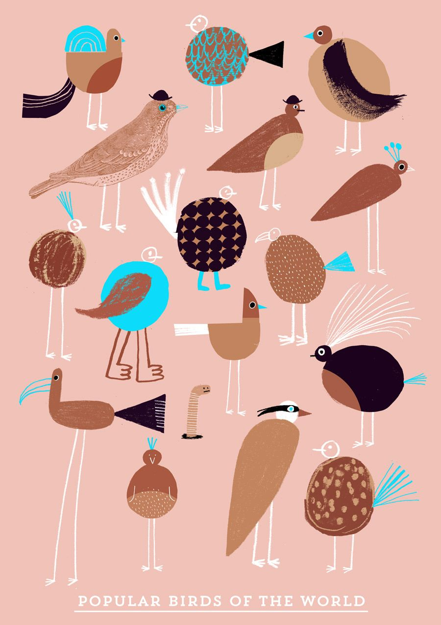 Rob Hodgson, Popular Birds Of The World