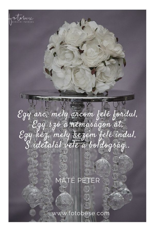 idézetek esküvői emlékkönyvbe Esküvői idézetek   Esküvői fotós, Esküvői fotózás, fotobese | Love