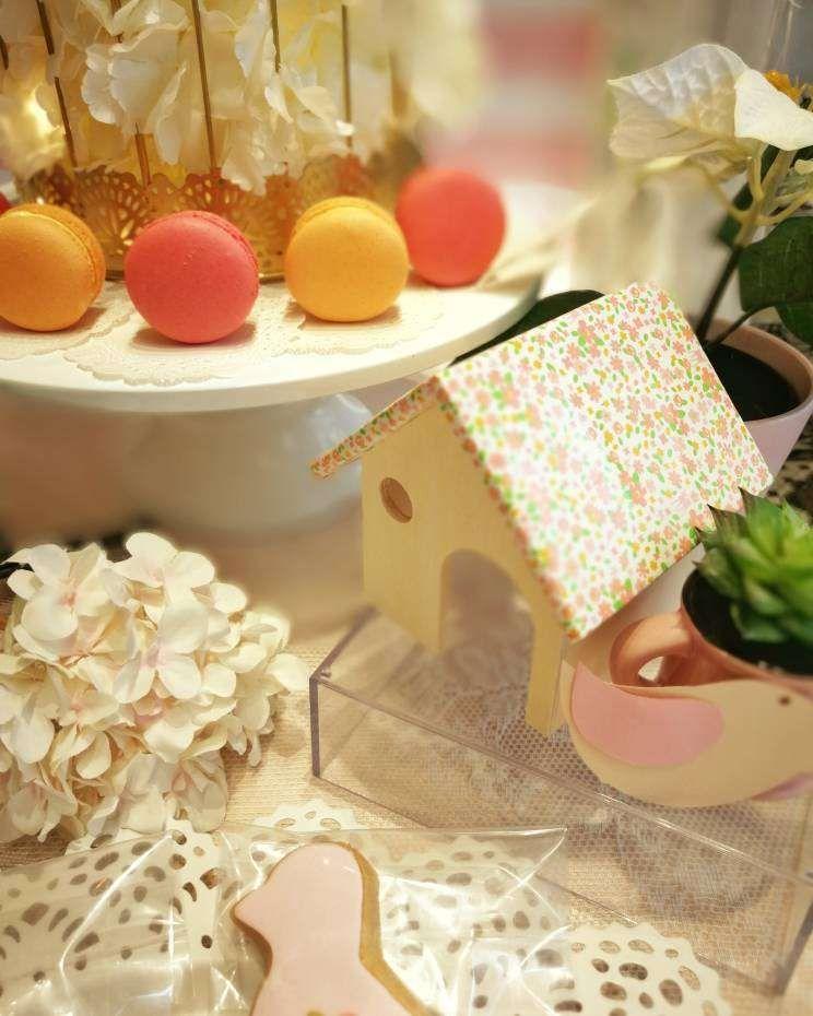 Little Bird Theme Birthday Party Ideas