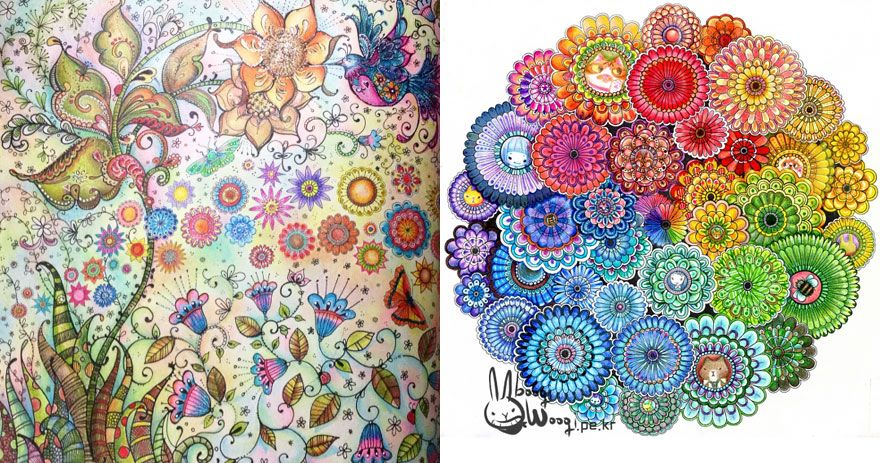 Artist Creates Adult Coloring Books And Sells More Than A Million ...