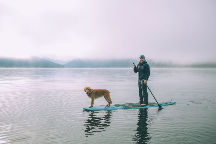 Dog & owner enjoying a paddle board cruise!  Dog photos. Paddling boarding.