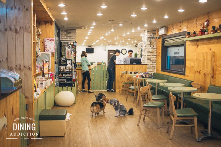 Restaurant Tables With Dog Pictures