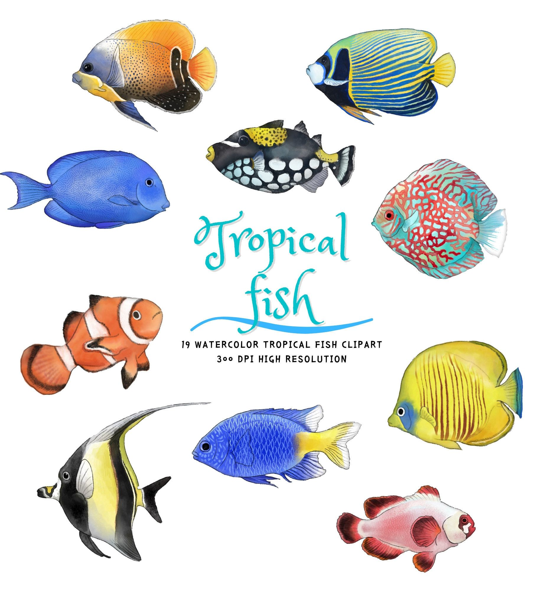 Watercolor Tropical Fish Png Clipart Etsy Tropical Fish Art Tropical Fish Fish Clipart