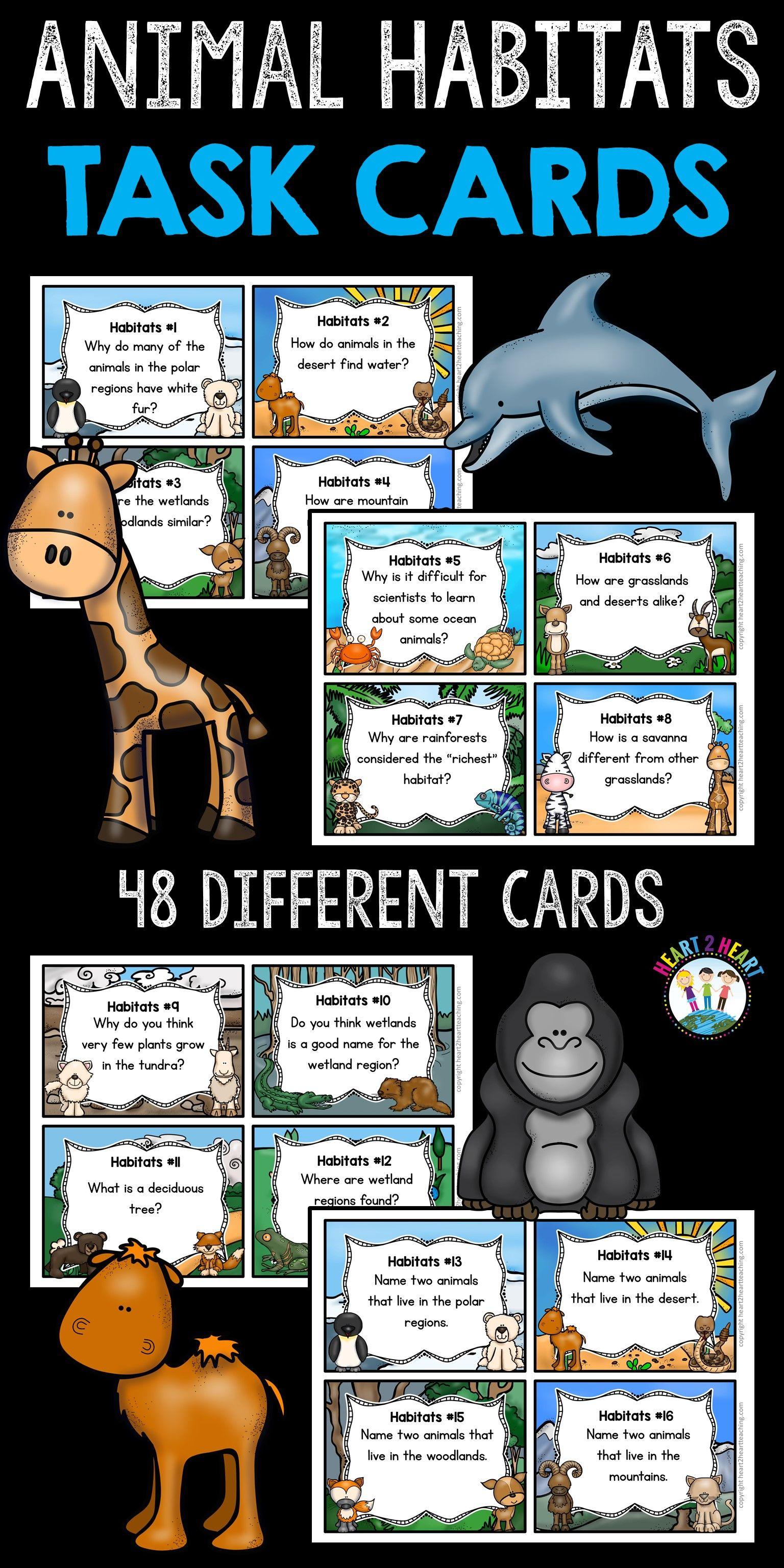 Animal Habitats Task Cards Set Of 48 Cards Amp 10