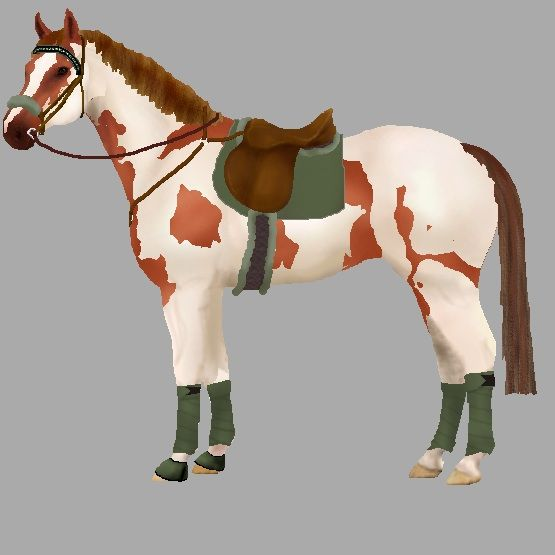 Design Your Own Horse And Dress It Up With Different Pieces Of English Tack To See What Colour Looks Best Read The Instructi Cheval Aquarelle Cheval Aquarelle