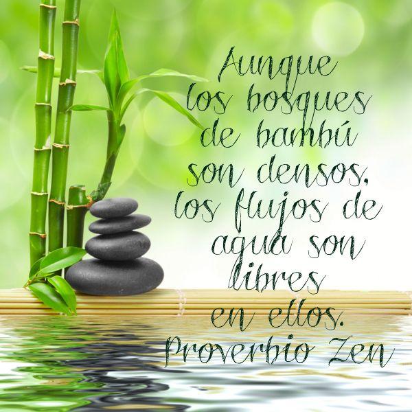 Proverbio Zen Proverbios Refranes Cortos Y Refranes