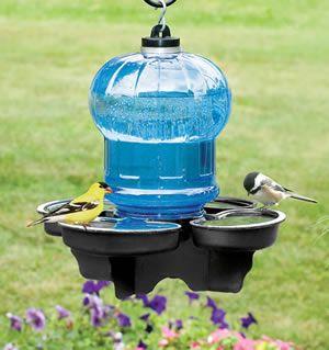 Duncraft Com Bird Water Cooler Backyard Birds Water Cooler Bird Bath