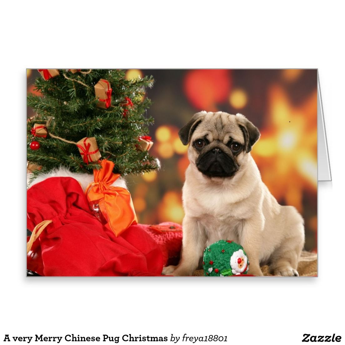A Very Merry Chinese Pug Christmas Greeting Card Dog Stuff