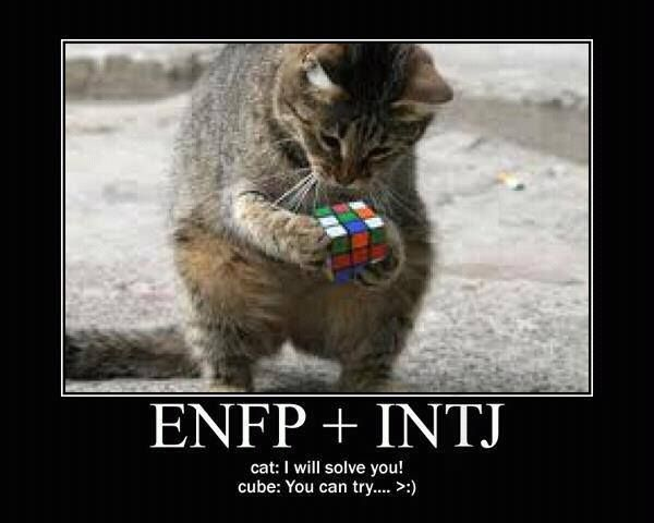 What could ENFPs possibly be attracted to in INTJs? : ENFP