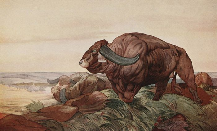 "The return of the Buffalo Herd. Illustration by Maurice and Edward J. Detmold from Kipling's ""The Jungle Book"" (1913)"
