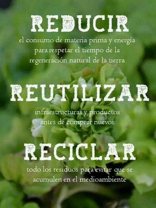 #EcoTip #RetoVerde