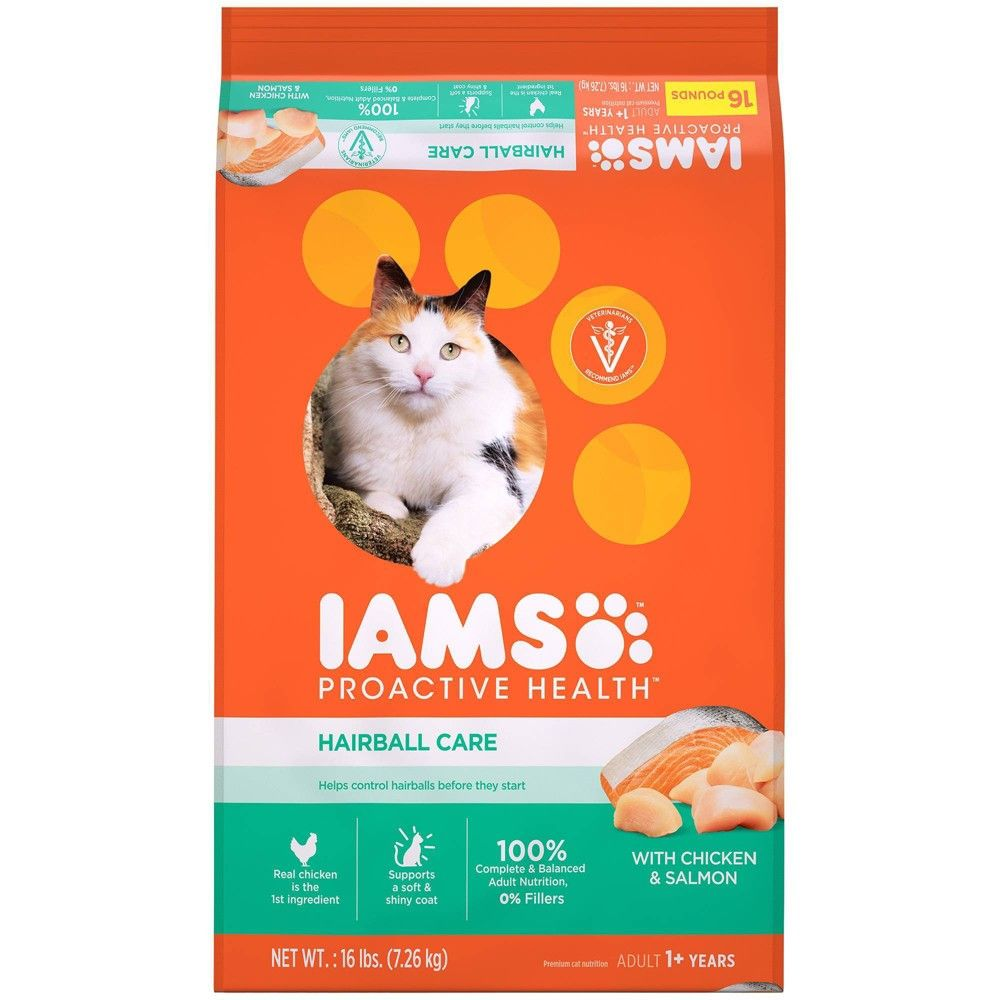 Iams proactive health adult hairball care dry cat food