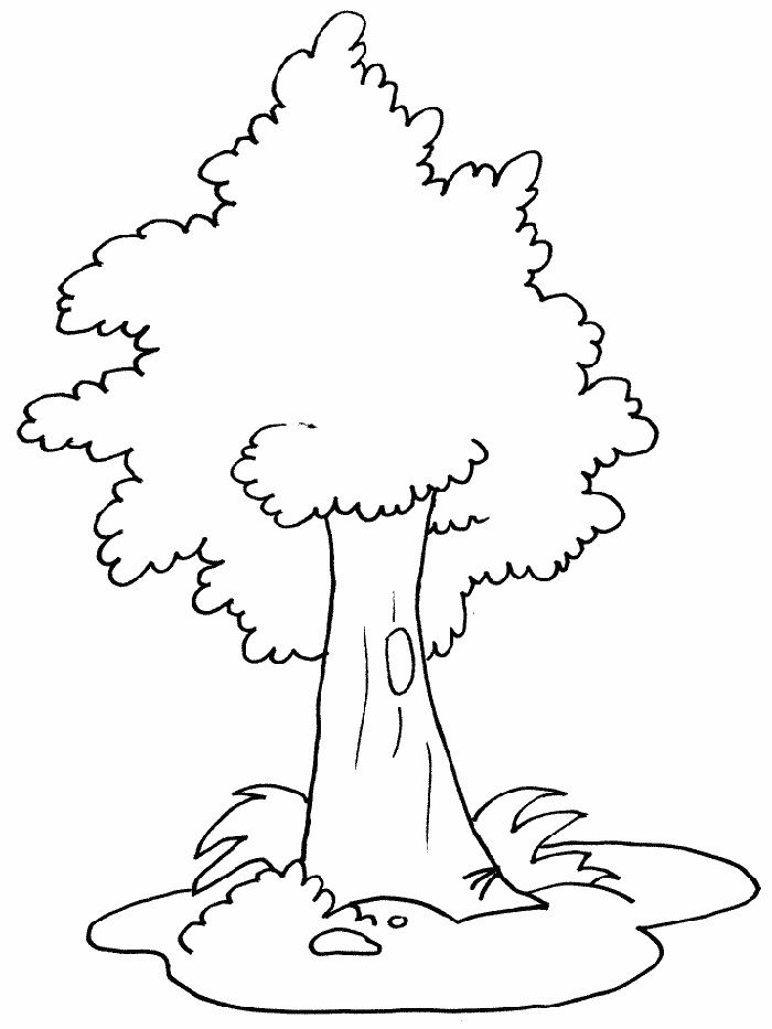 Print Coloring Image Momjunction Coloring Pages Tree Drawing Simple Tree Coloring Page