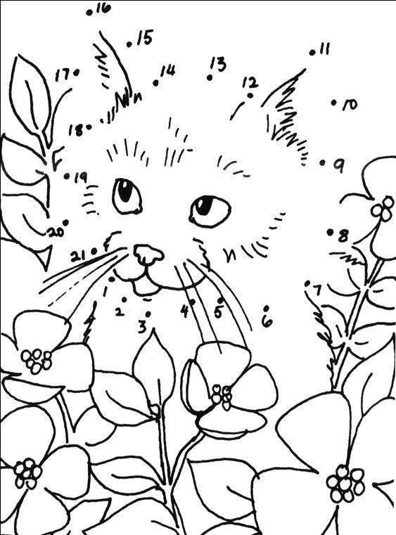 Coloriage point a point a imprimer chaton dans les fleurs gratuit et colorier printemps - Les fleurs coloriage ...