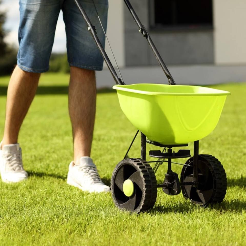 Give your lawn an energy boost by fertilizing it now