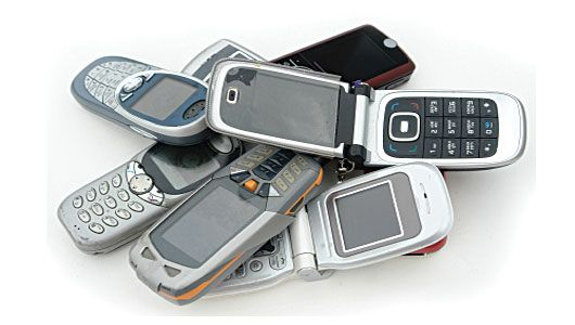 Recycle That Old Cell Phone To Help Animals With Images Old
